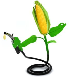 Corn Nozzle Exported
